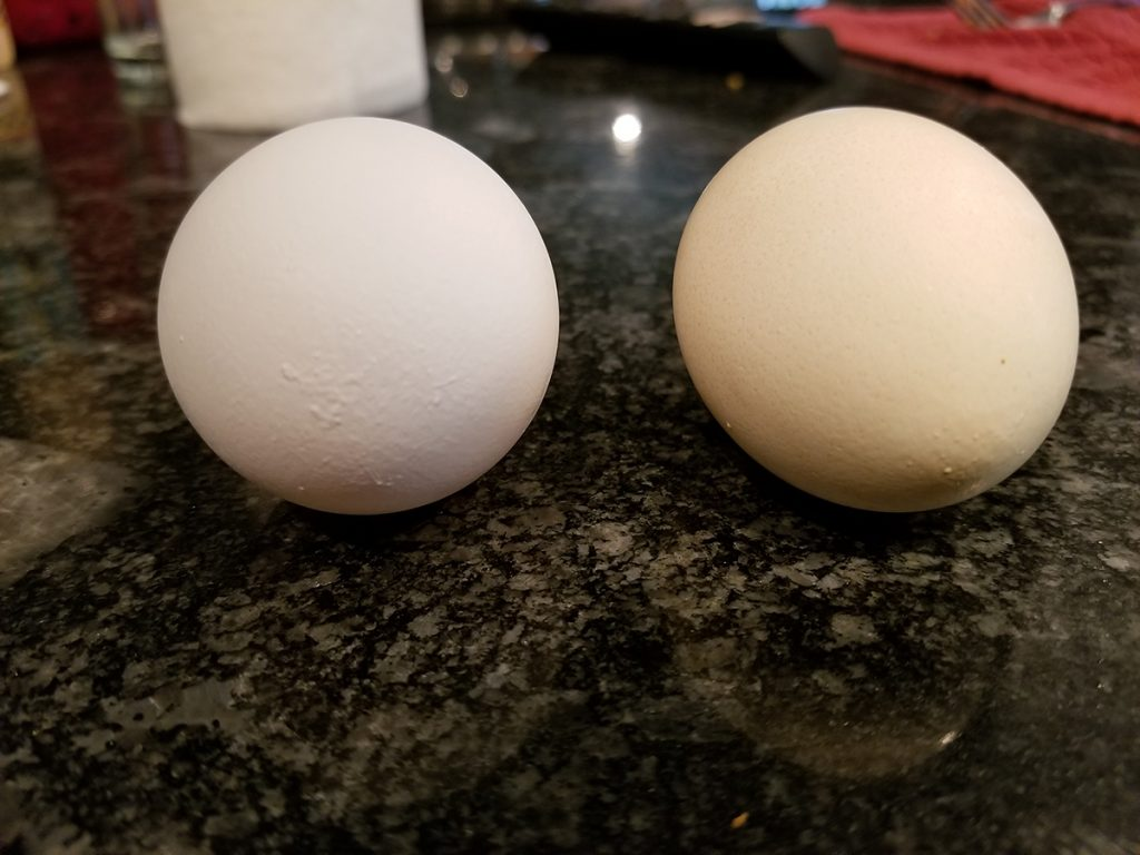 Coffee Stained Eggs